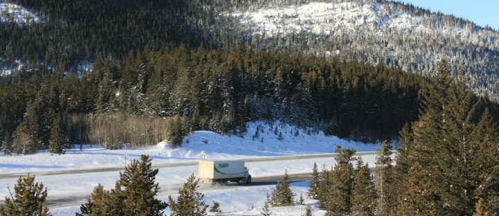 Alberta's newest wildlife crossings a positive investment: Conservationists